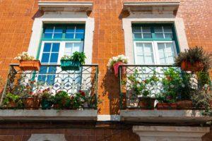 Balkon Pflanzen Sicherheit